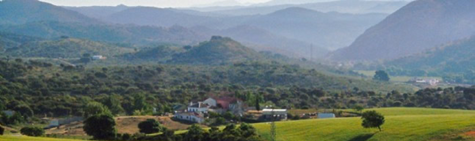View Surrounding Walnut Farm Holiday Accommodation Andalucia Spain